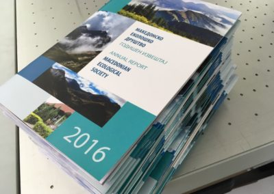 MES Annual Report